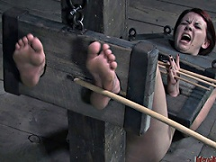 She eats when told, cums on command and can take a vicious caning...